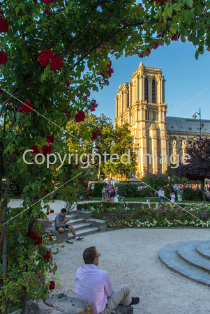 Paris, France, Street Scenes in Latin Quarter, City Square with Notre Dame Cathedral,