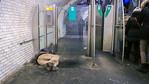 Paris, France, Homeless Man, Sleeping on Metro Quay, Porte de VI
